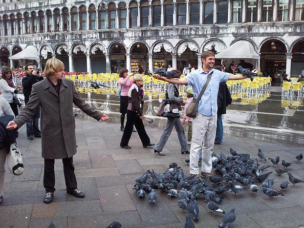 I-Never-Get-The-Birds